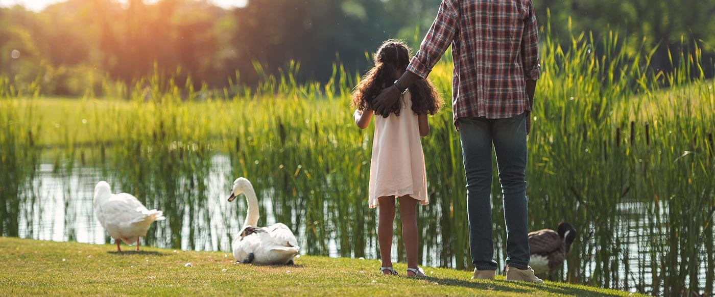 A dad with his daughter feeding geese at a pond